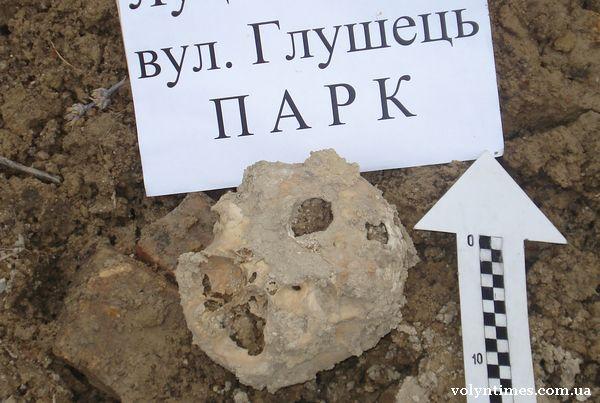 Людський череп виявлений в парку